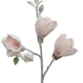 Magnolia rosa chiaro cm 50